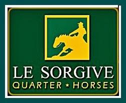 logo_lesorgive